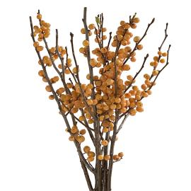 Specialty Branches gold Ilex