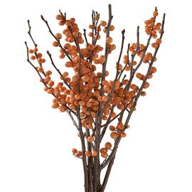 Orange Ilex Specialty Branches